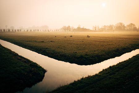 civiltà dei fiumi