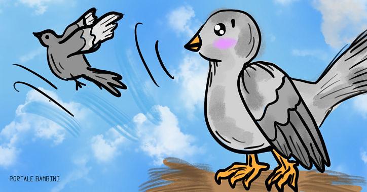 i due piccioni