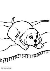 disegni di cani da colorare 6