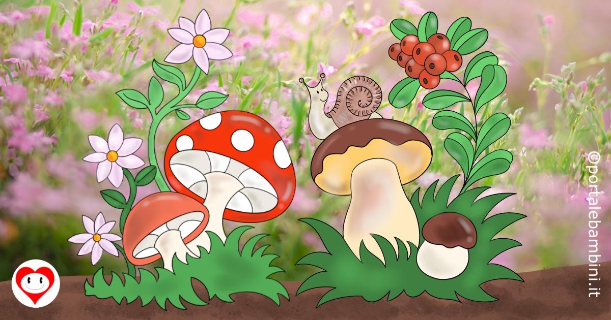 funghi da colorare