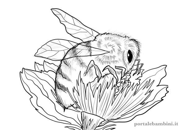 disegni di api da stampare e colorare 1