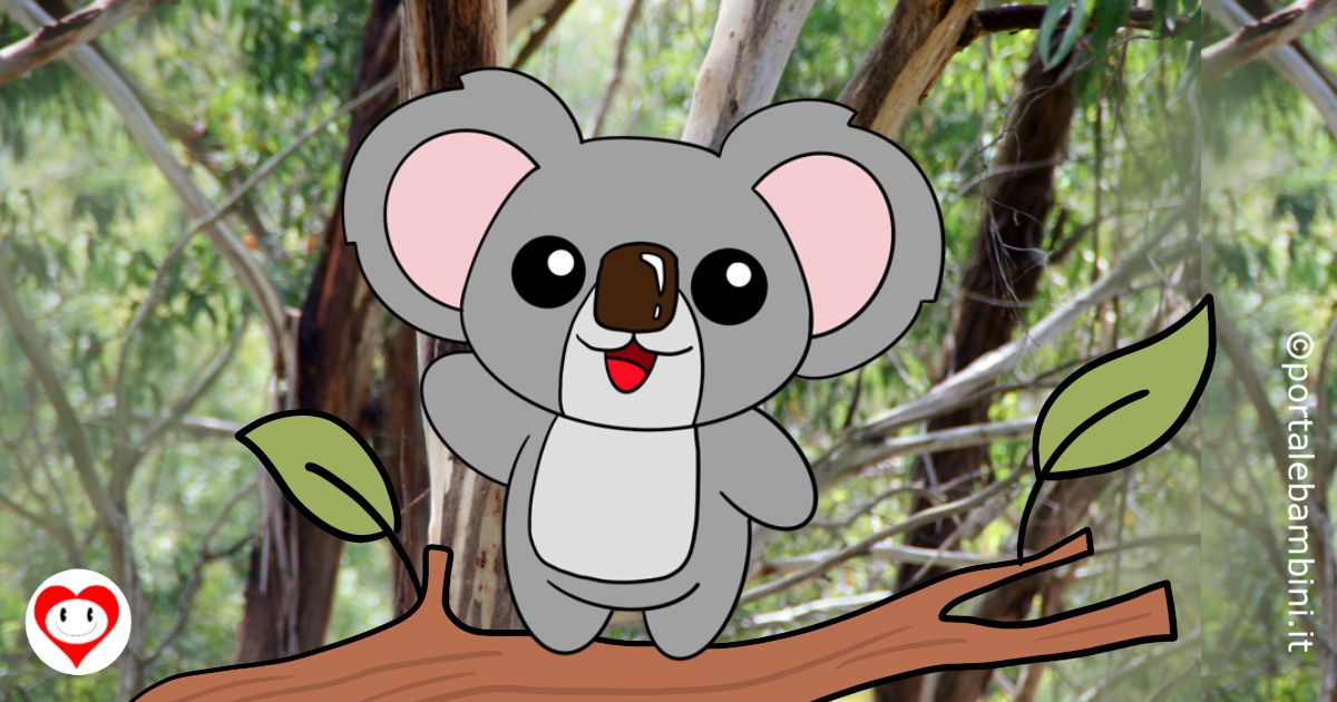 koala da colorare