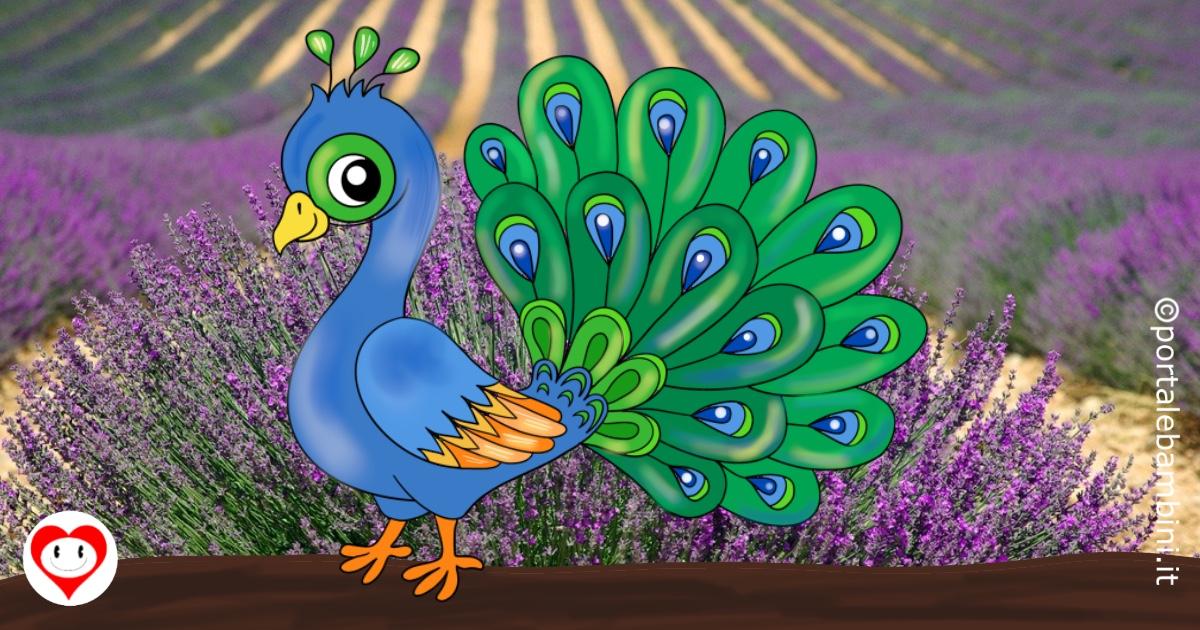 pavoni da colorare