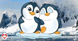 pinguini da colorare