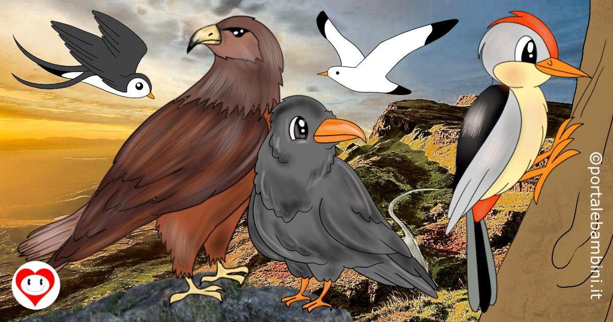 uccelli da colorare