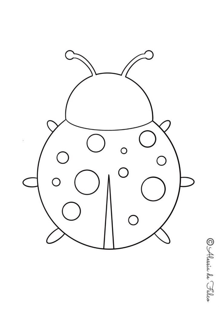 insetti da colorare coccinelle
