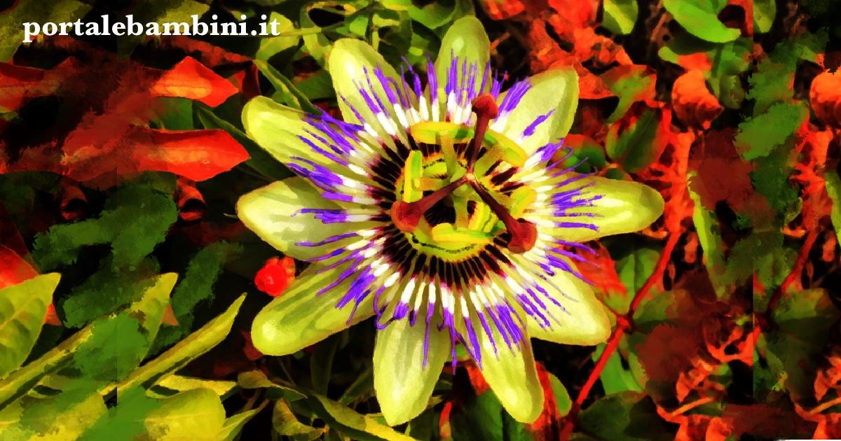 la leggenda della passiflora storie di pasqua