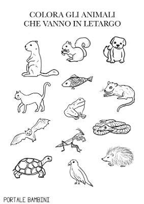 animali che vanno in letargo