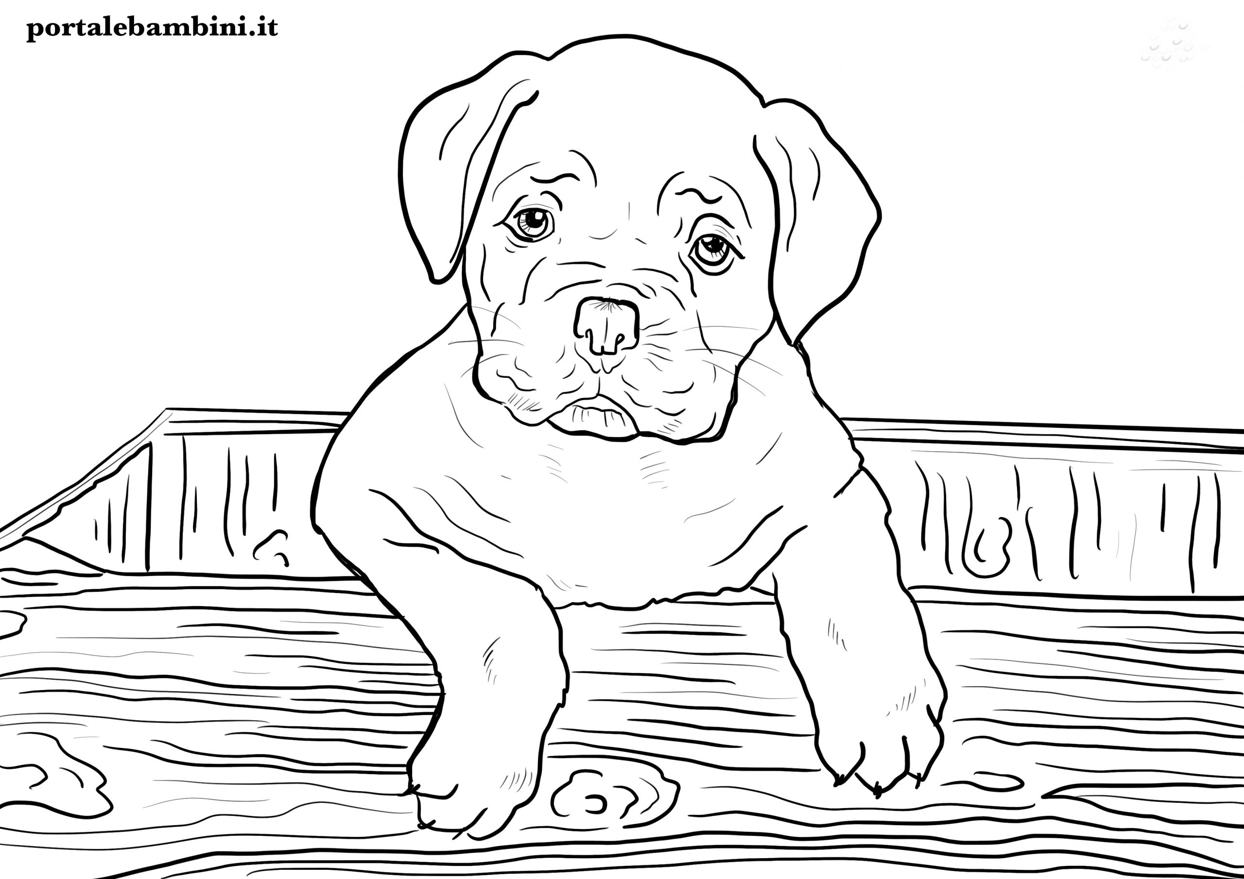 disegni di cani da stampare e colorare per bambini