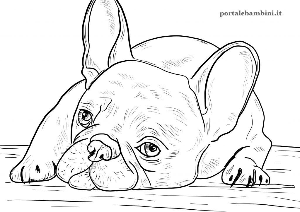 disegni di cani da stampare e colorare per bambini bulldog