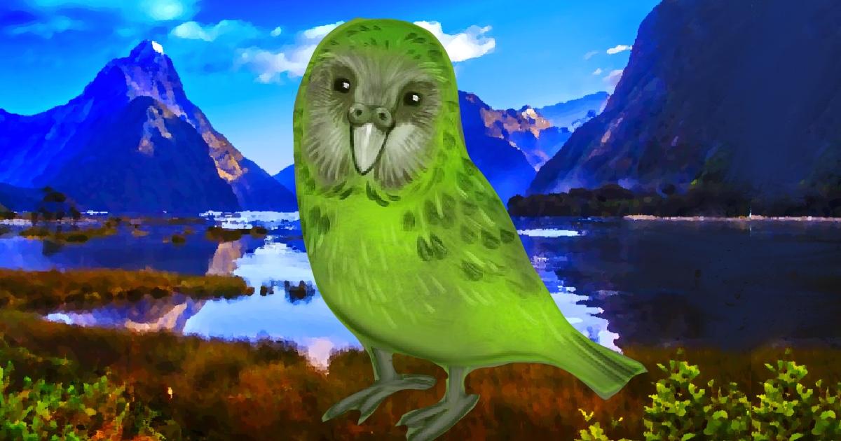la favola del kakapo