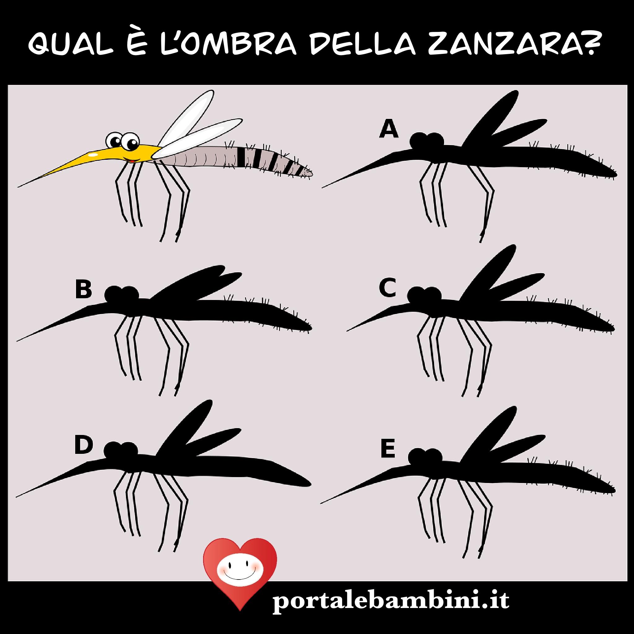 indovinello della zanzara
