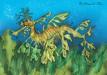 cavalluccio marino da colorare esemplare di dragone foglia