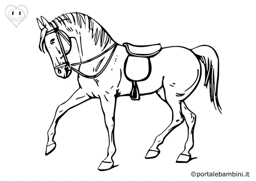 cavalli da colorare 2