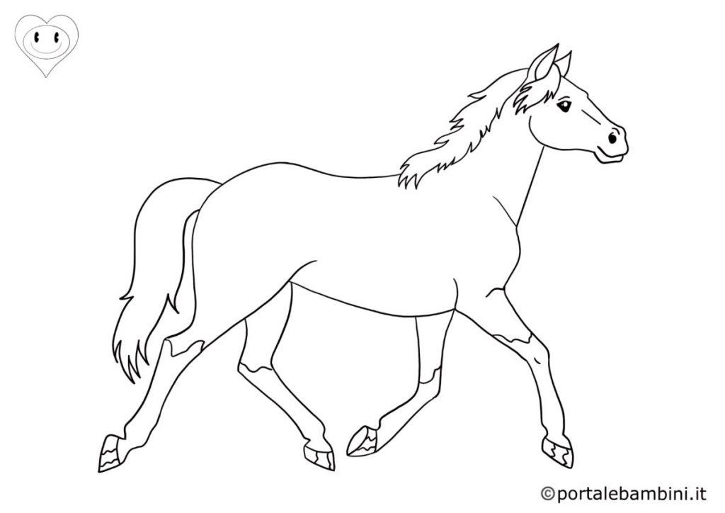 cavalli da colorare 1
