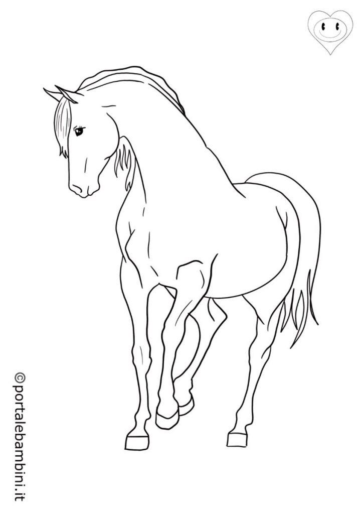 cavalli da colorare 4