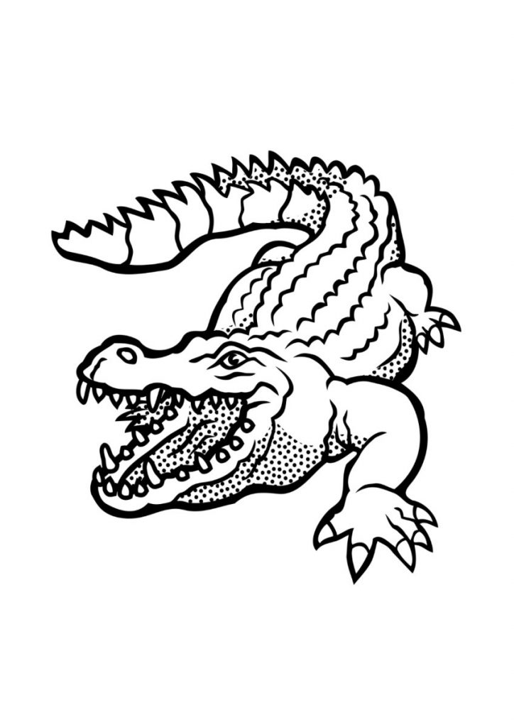 rettili da colorare coccodrilli