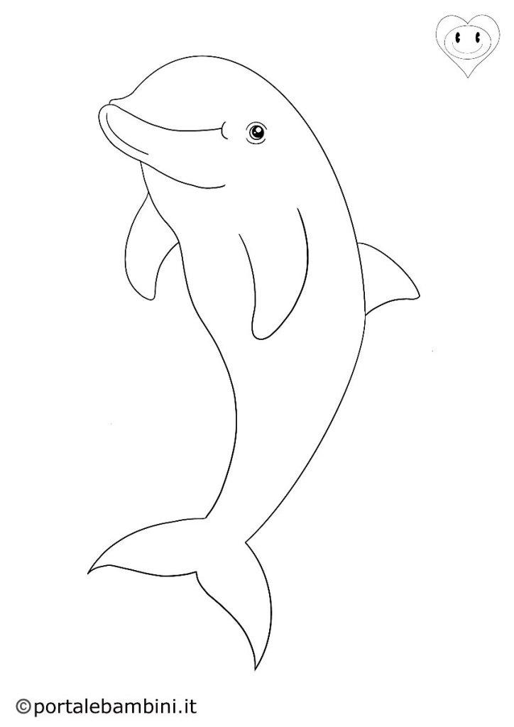 delfini da colorare 3