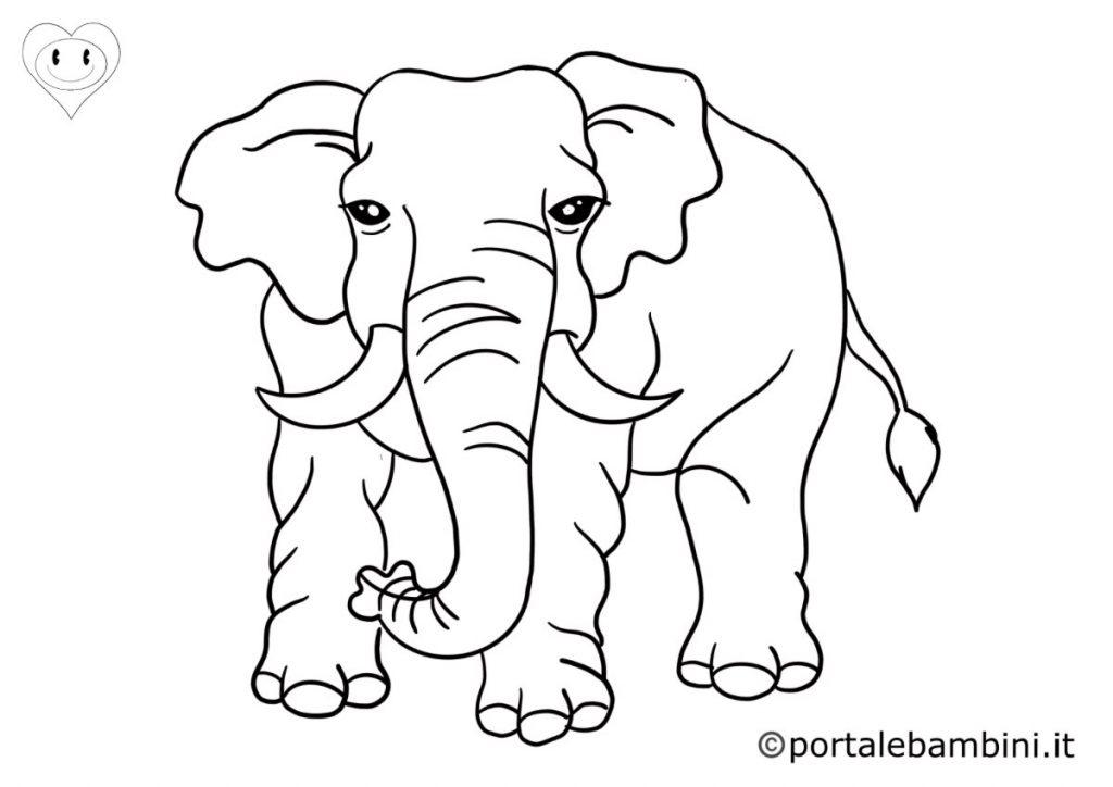 elefanti da colorare 6