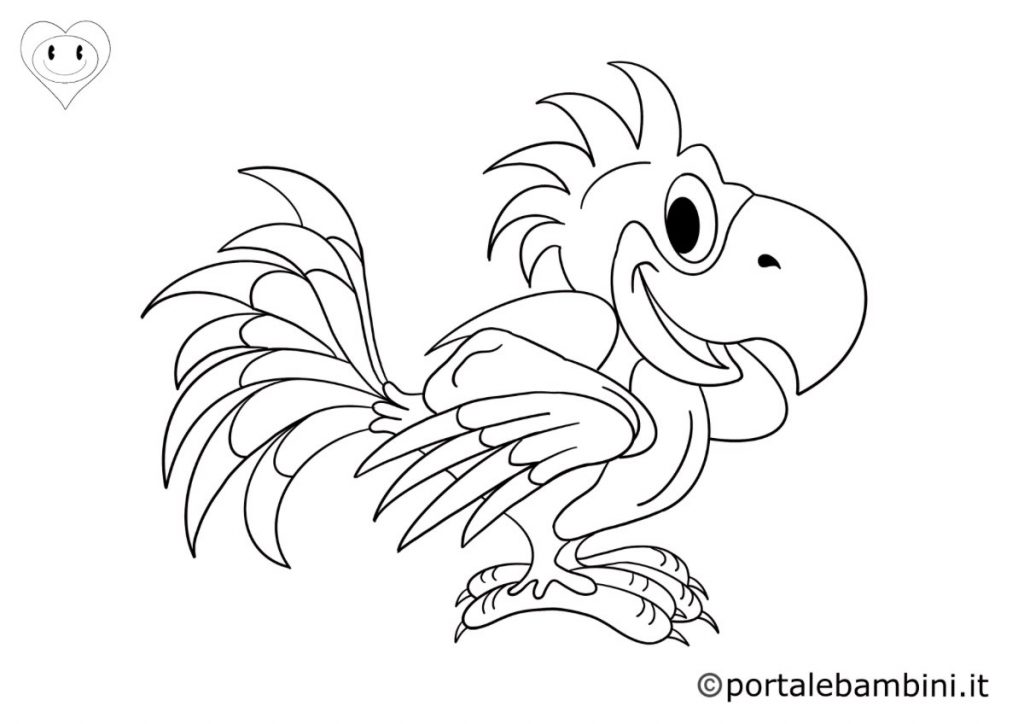 pappagalli da colorare 5