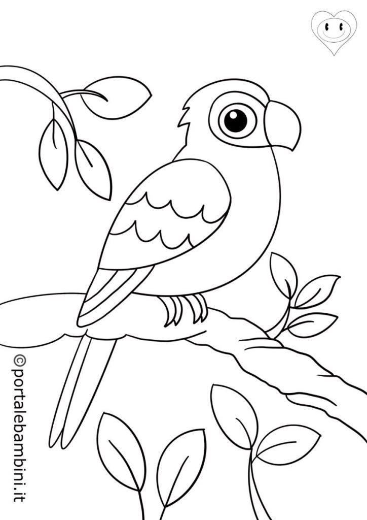 animali della giungla da colorare pappagalli