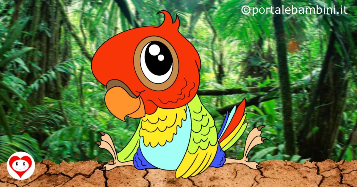pappagalli da colorare