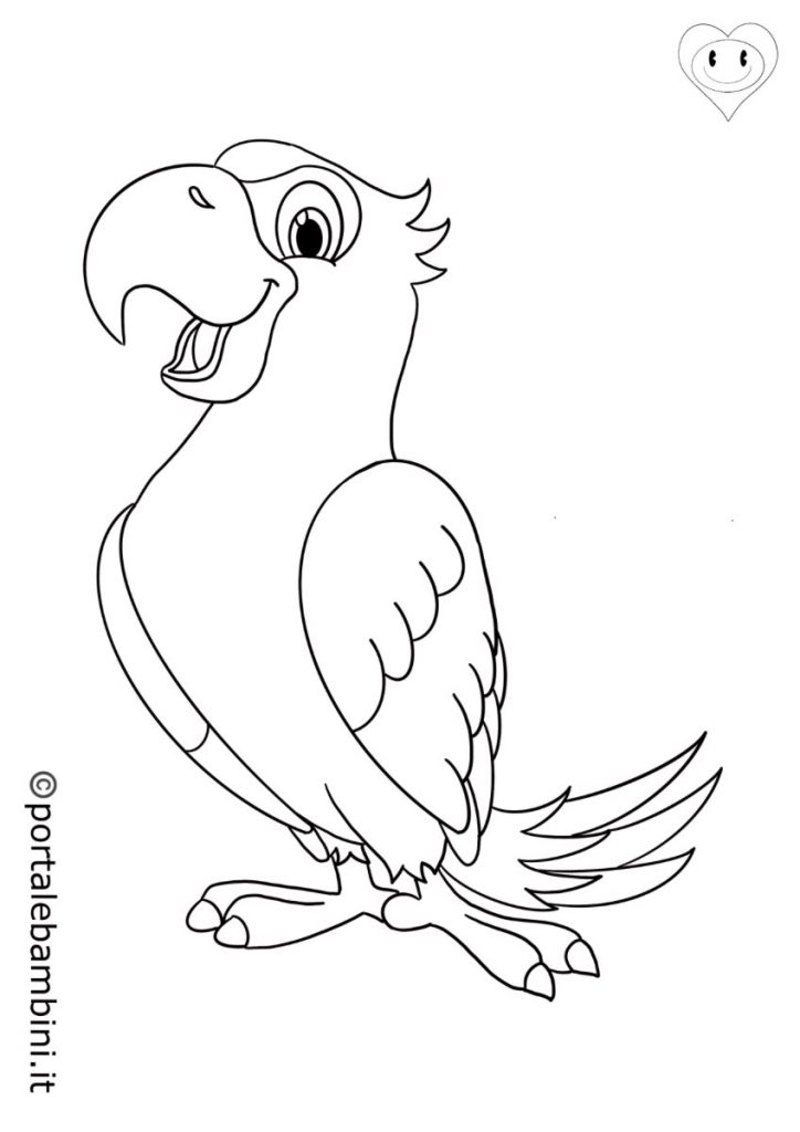 uccelli da colorare pappagalli