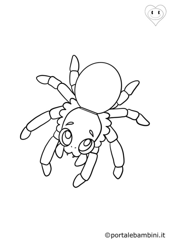 ragni da colorare 2
