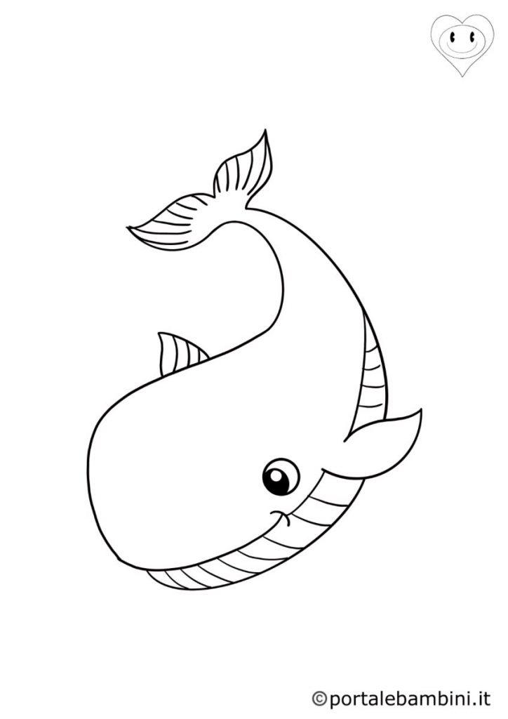 balene da colorare 2