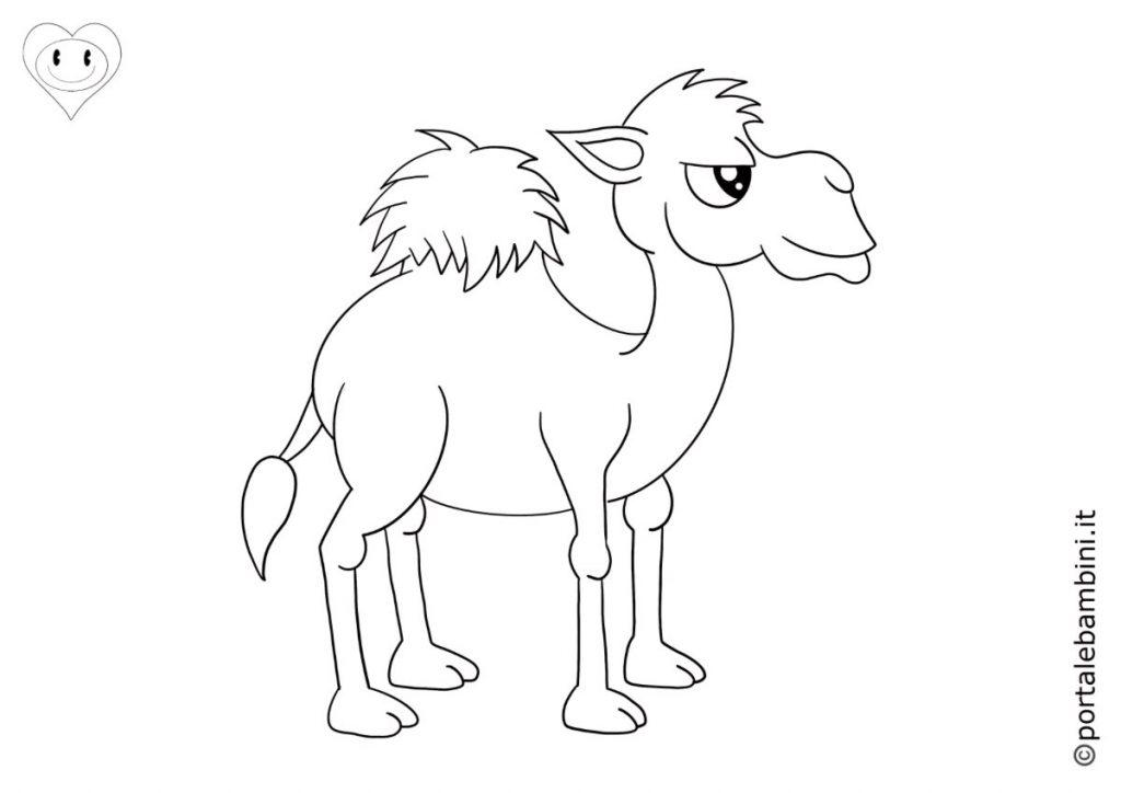 cammelli da colorare 2