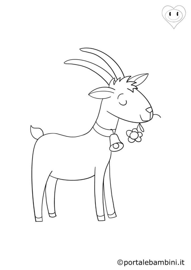 capre da colorare 2