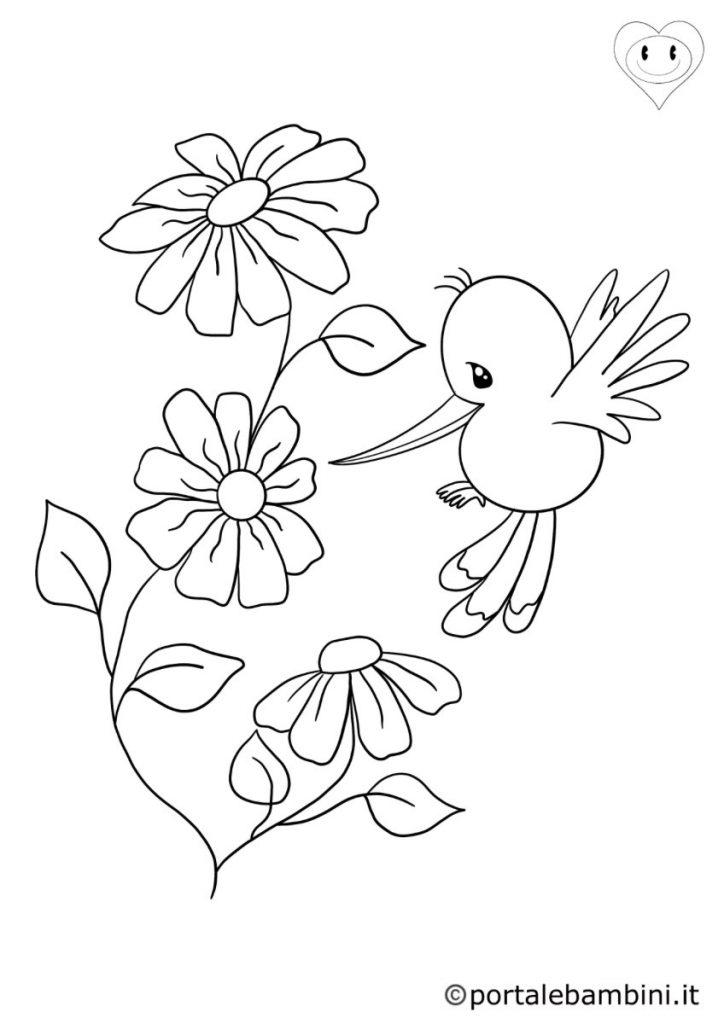 colibrì da colorare 1