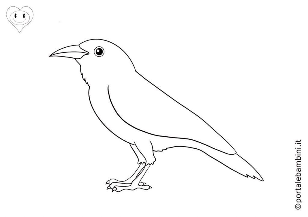 corvi da colorare 2