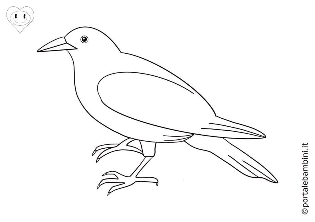 corvi da colorare 3