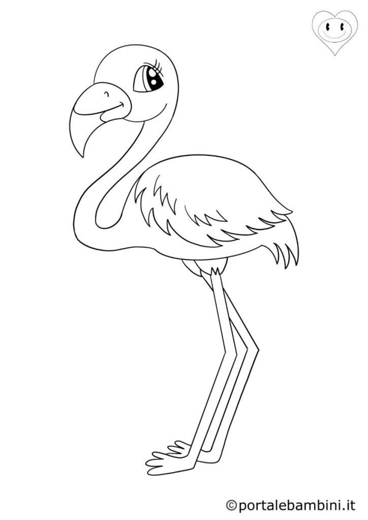 uccelli da colorare fenicotteri