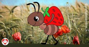 formiche da colorare