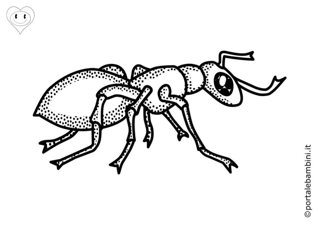formiche da colorare 6