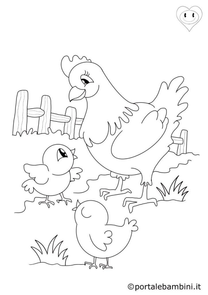 galline da colorare 4