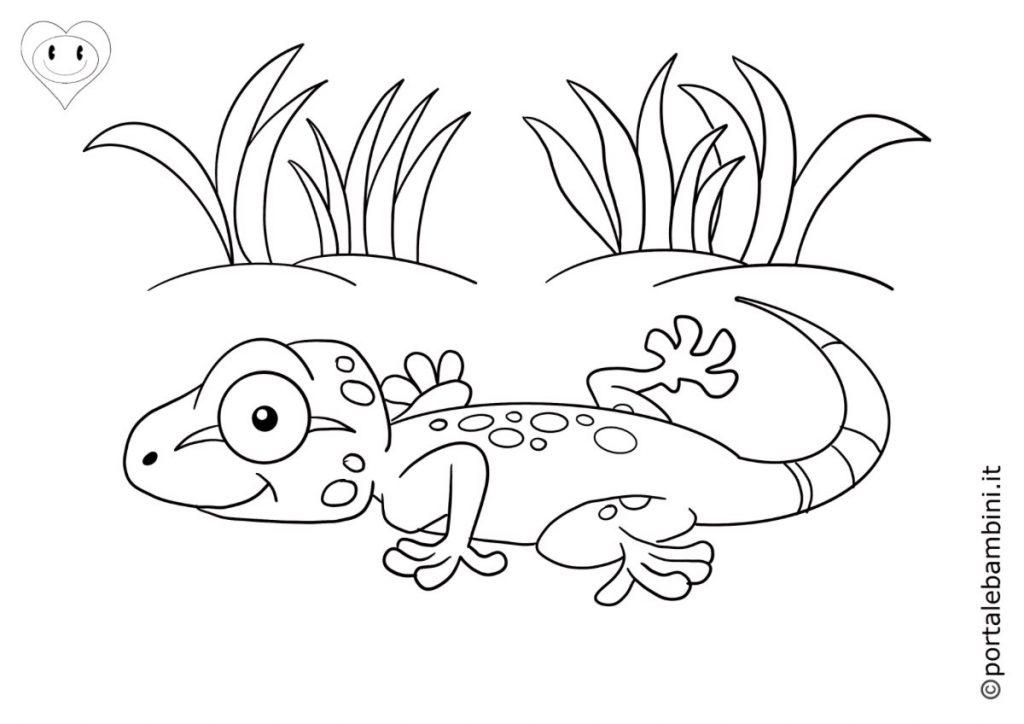 geco da colorare 3