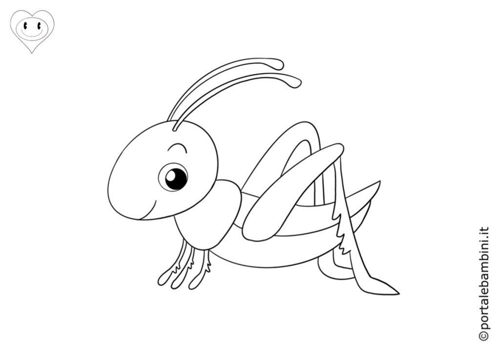 insetti da colorare grilli