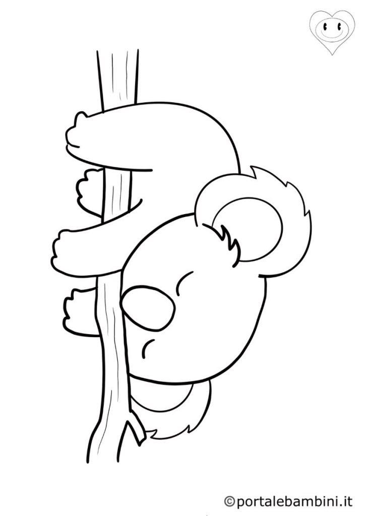 koala da colorare 1