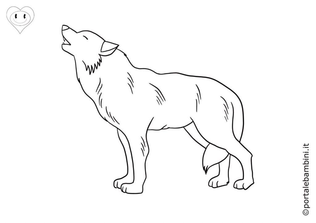 lupi da colorare 5
