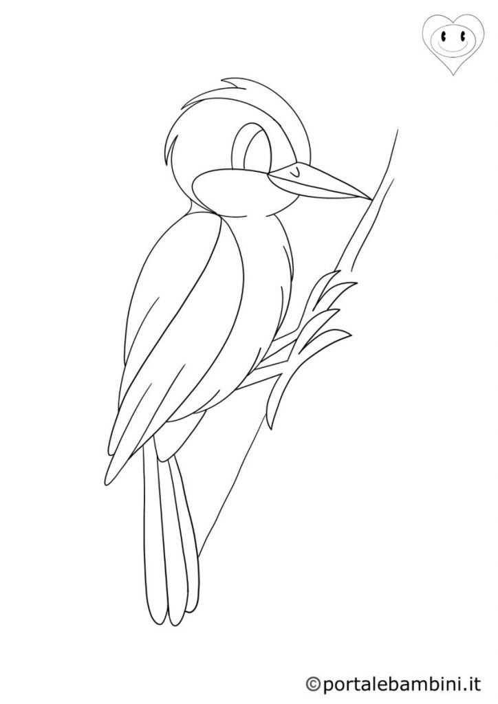 uccelli da colorare picchio