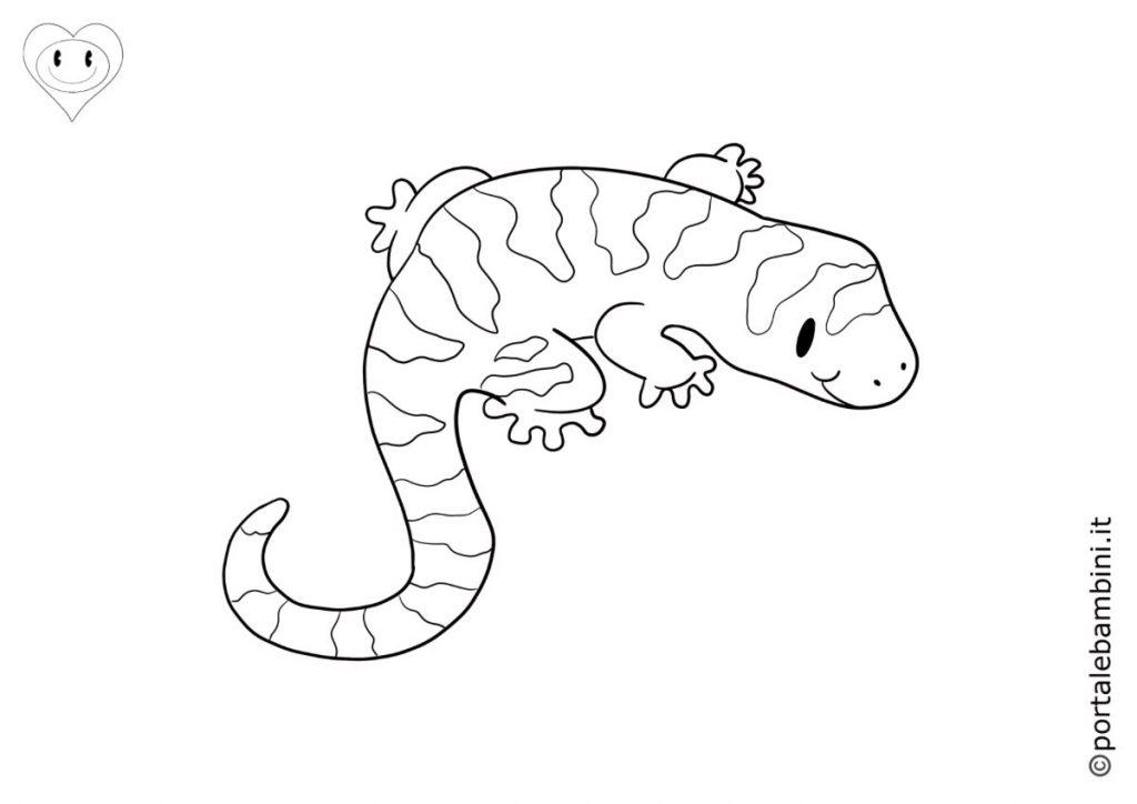 salamandre da colorare 2