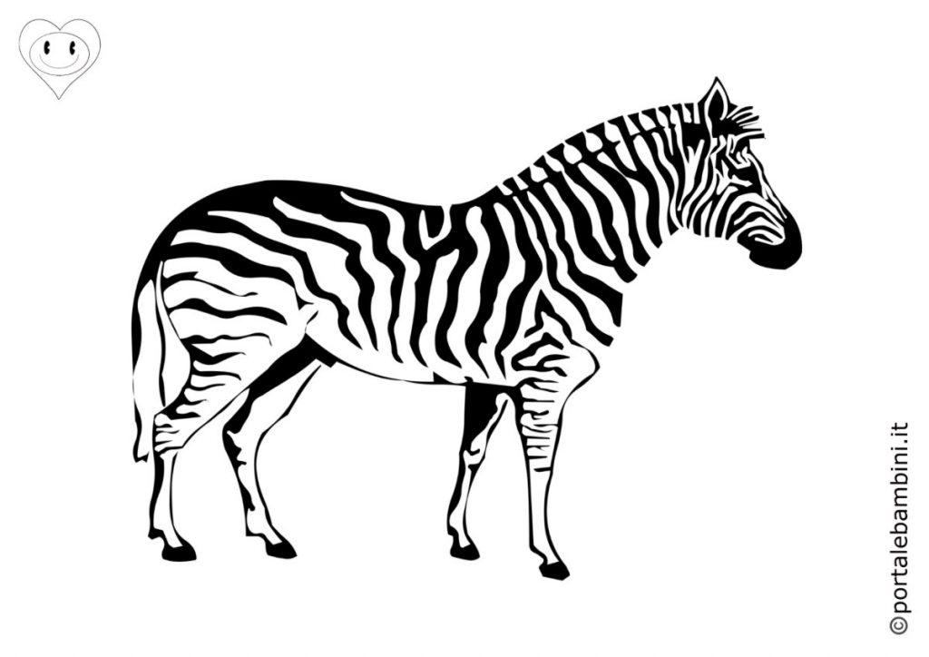 zebre da colorare 3