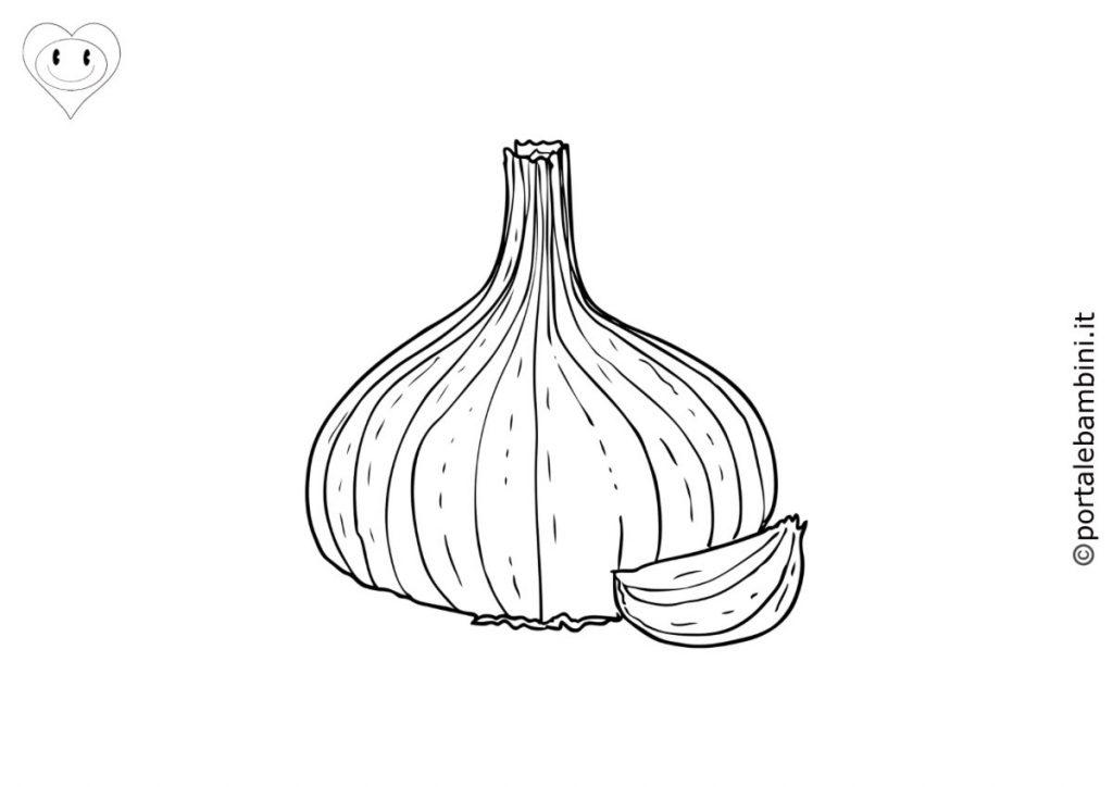 aglio da colorare 1