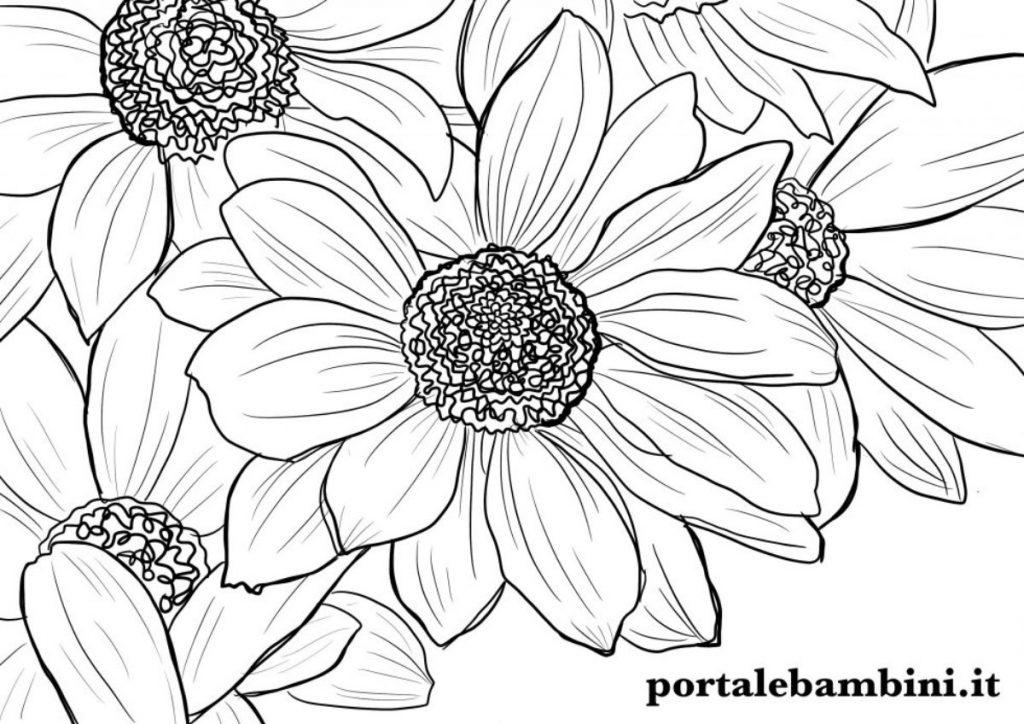 fiori da colorare 7