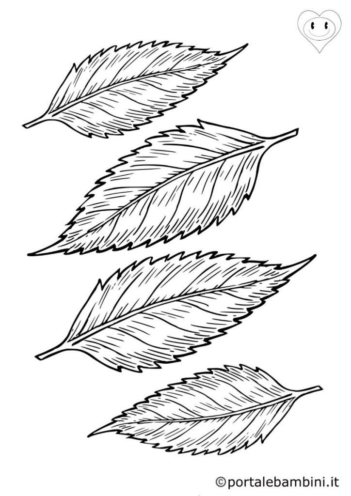 foglie da colorare 2