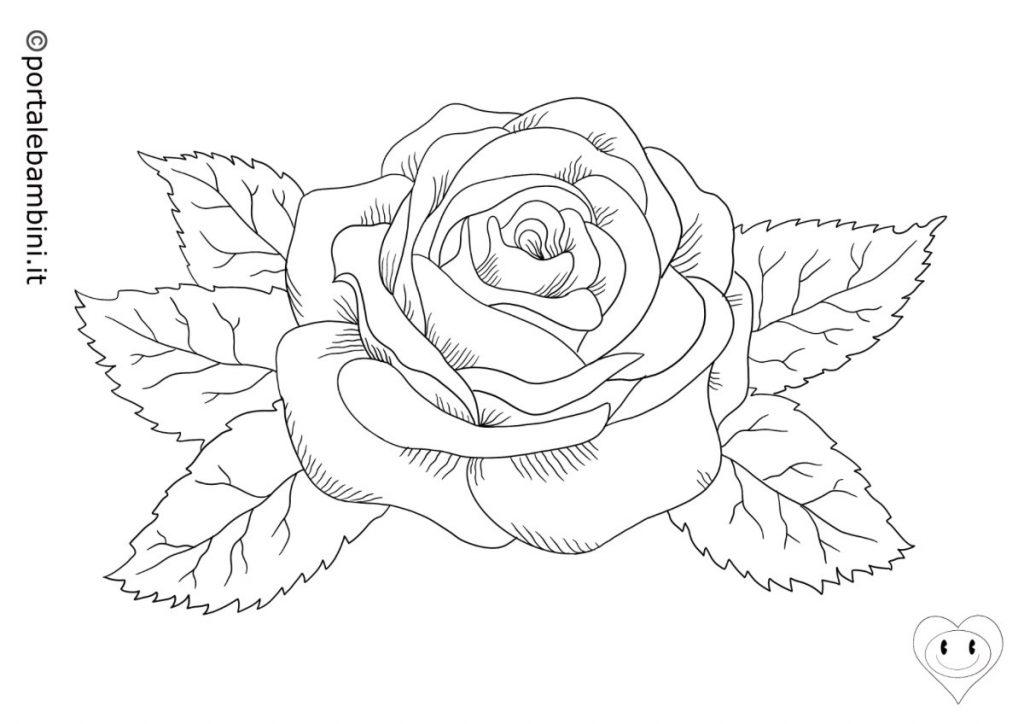 rose da colorare 4