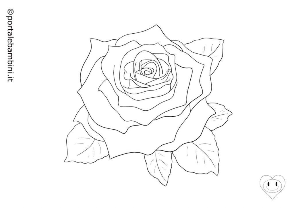 rose da colorare 5